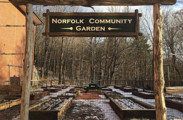 Norfolk Community Garden Flourishes at Botelle School